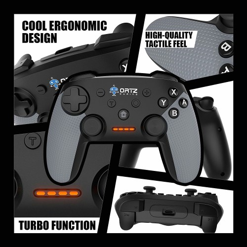 #2 Ortz Switch Pro Controller
