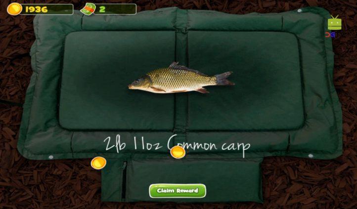 #4 Carpcraft Fishing